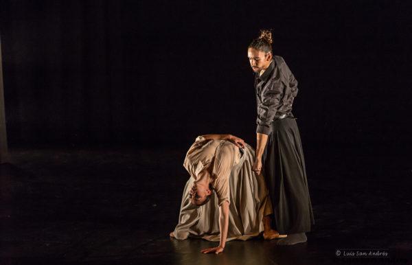 5 - IT Dansa photo by Luis San Andrés