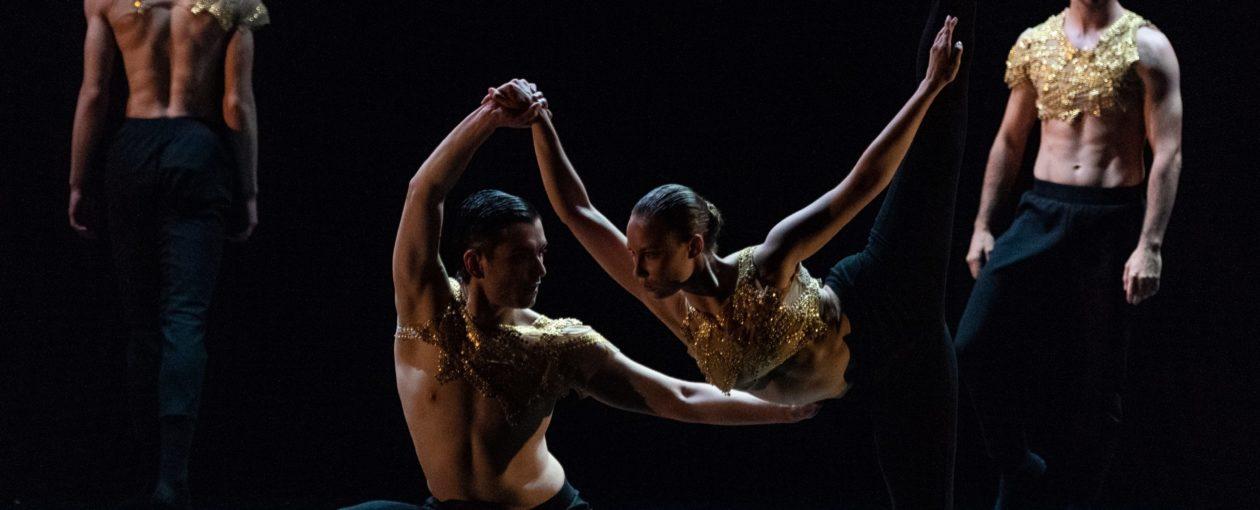 korpo dance project